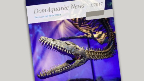 Latest edition of the DomAquarée News