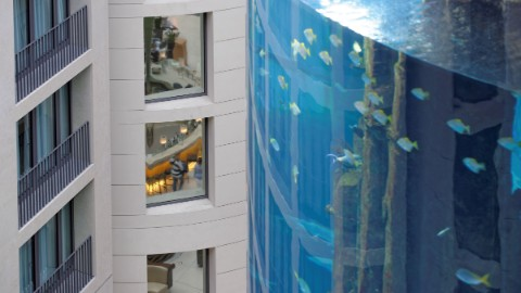 Image 2: Close-up view of Berlin attraction AquaDom and Radisson Blu Hotel at DomAquarée.